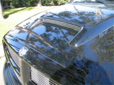 Hood Scoop - Hood Scoop Grille Insert - T-Rex Grilles - T-Rex Grilles 20463 Billet Series Hood Scoop Grille