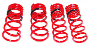 Suspension Systems - Tanabe Suspension - Springs